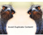 Manage duplicate records with Tall Emu CRM